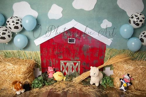 Kate Boy Barn Backdrop for Photography Designed by Jenna Onyia