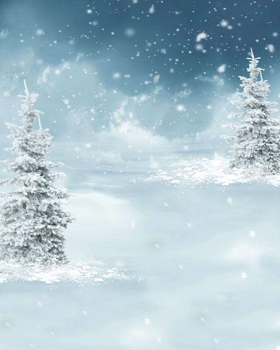 Katebackdrop£ºKate fall snow backdrop fantasic Christmas tree for photos