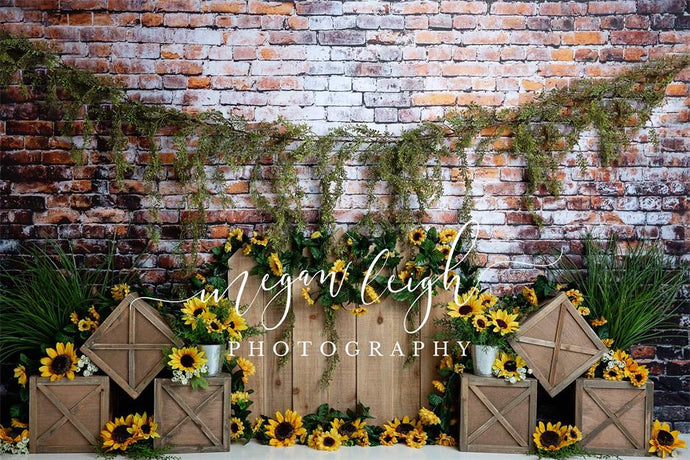 Kate Sunflower Garden Brick Backdrop Designed by Megan Leigh Photography