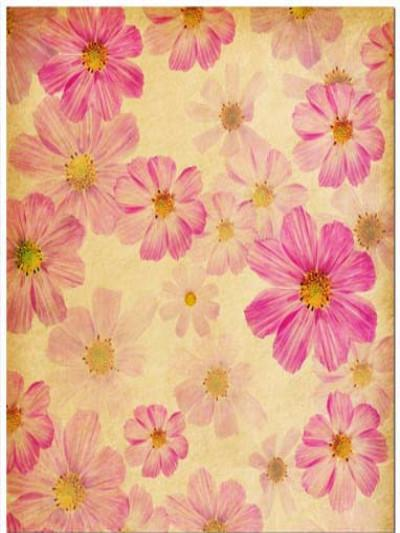 Katebackdrop£ºKate Retro Style Pink Floral Celebration Backdrop
