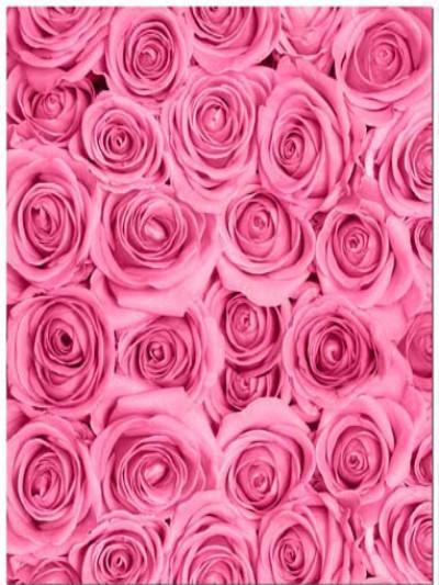 Katebackdrop£ºKate Fabric Pink Rose Flower Clusters Backdrop Photography