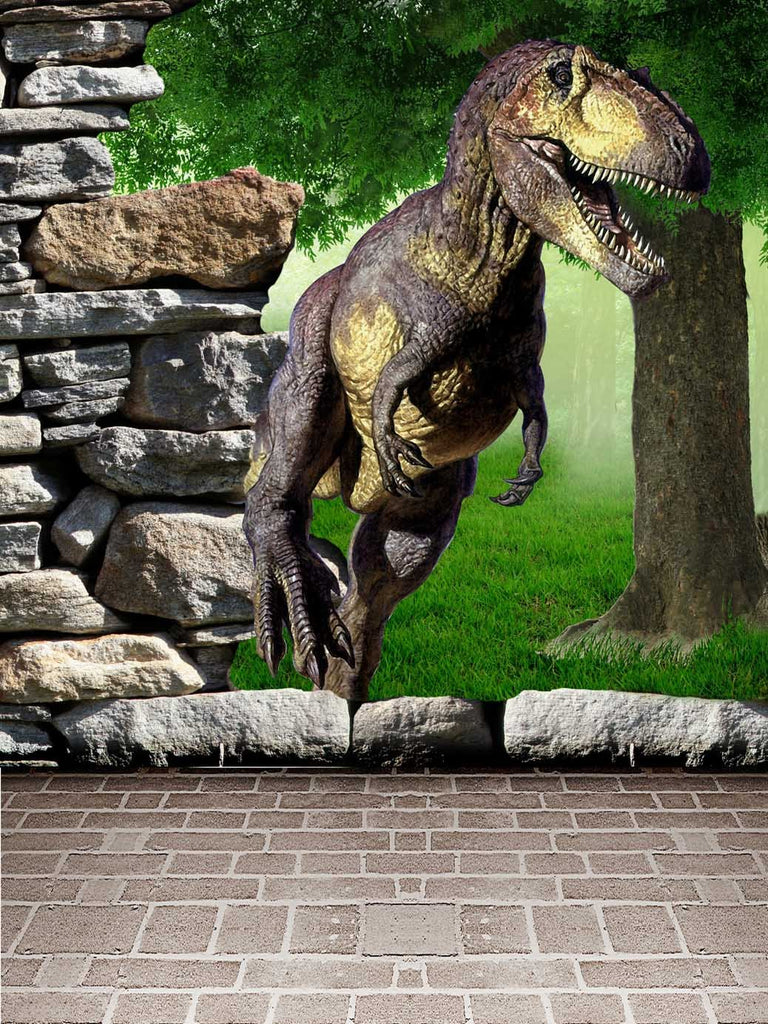 Kate Dinosaur Photography Backdrops 3D Rock Floor Scenery Background for Children