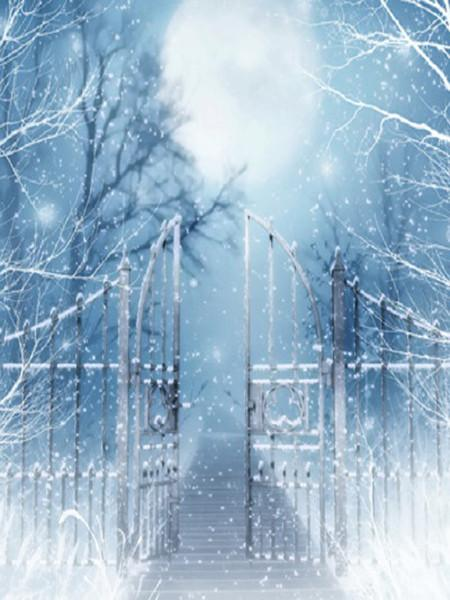 Katebackdrop£ºKate Winner Photography Backdrops Bridge Gate With Snow Backdrop