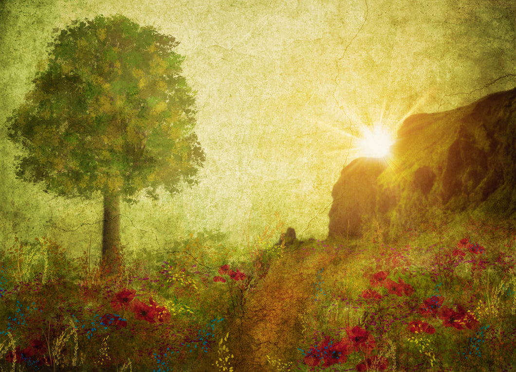 Kate Texture Summer Painting Vintage Sunrise Designed by Thousand Words Photography