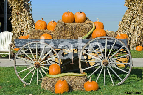 Katebackdrop:Kate fram backdrop Harvest autumn pumpkin set photo