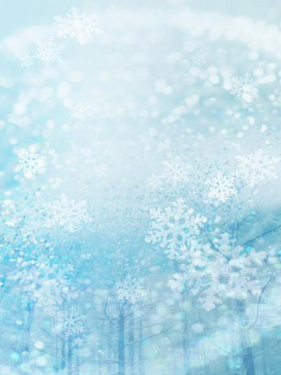 Kate Blue White Glitter Snowflake Winter Bokeh Halos Backdrops Christmas - Kate backdrops UK
