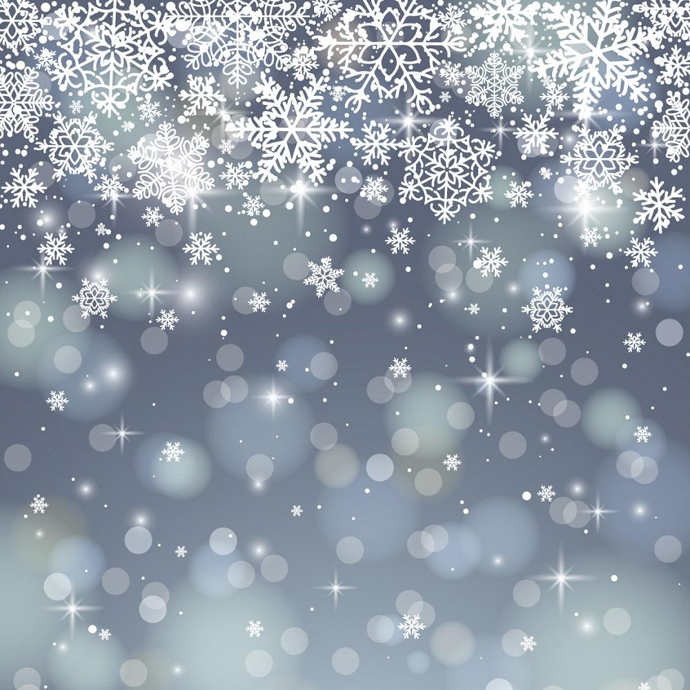 Kate sliver bokeh snowflake backdrop for Christmas-only two