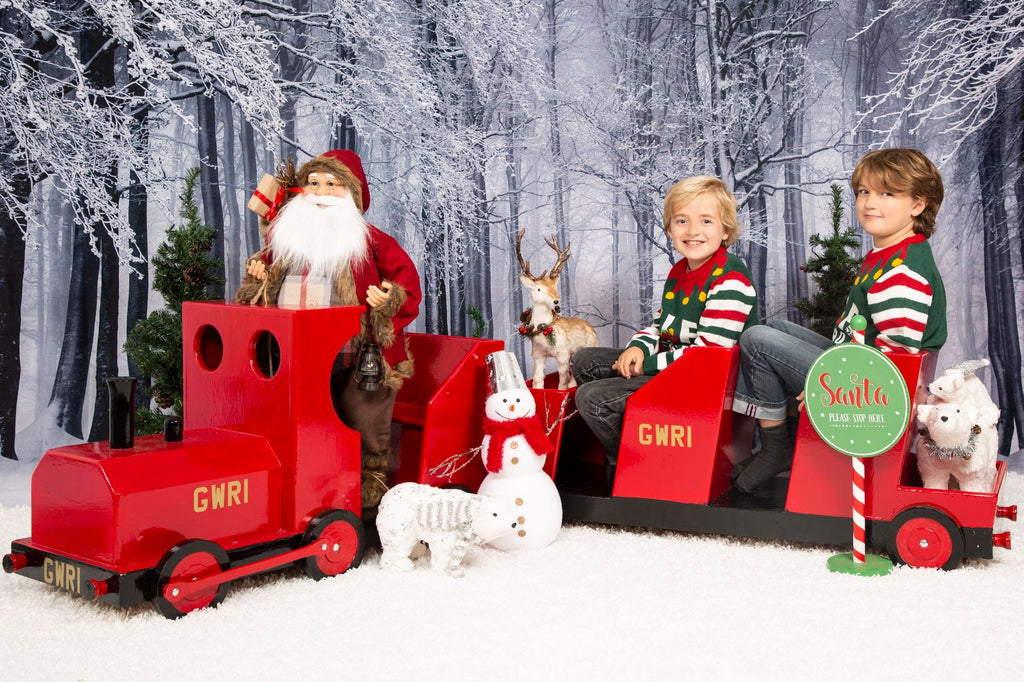 Kate Winter Forest Snow Photo Backdrop Photography Props - Kate backdrop UK