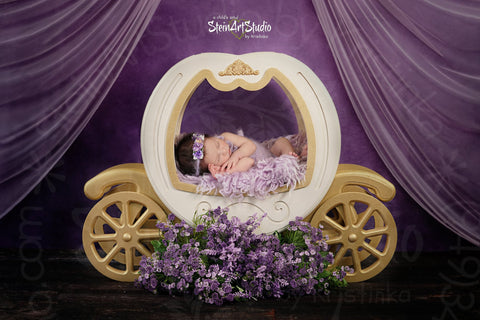 Kate Soft Purple Fine Art Backdrop designed by Veronika Gant