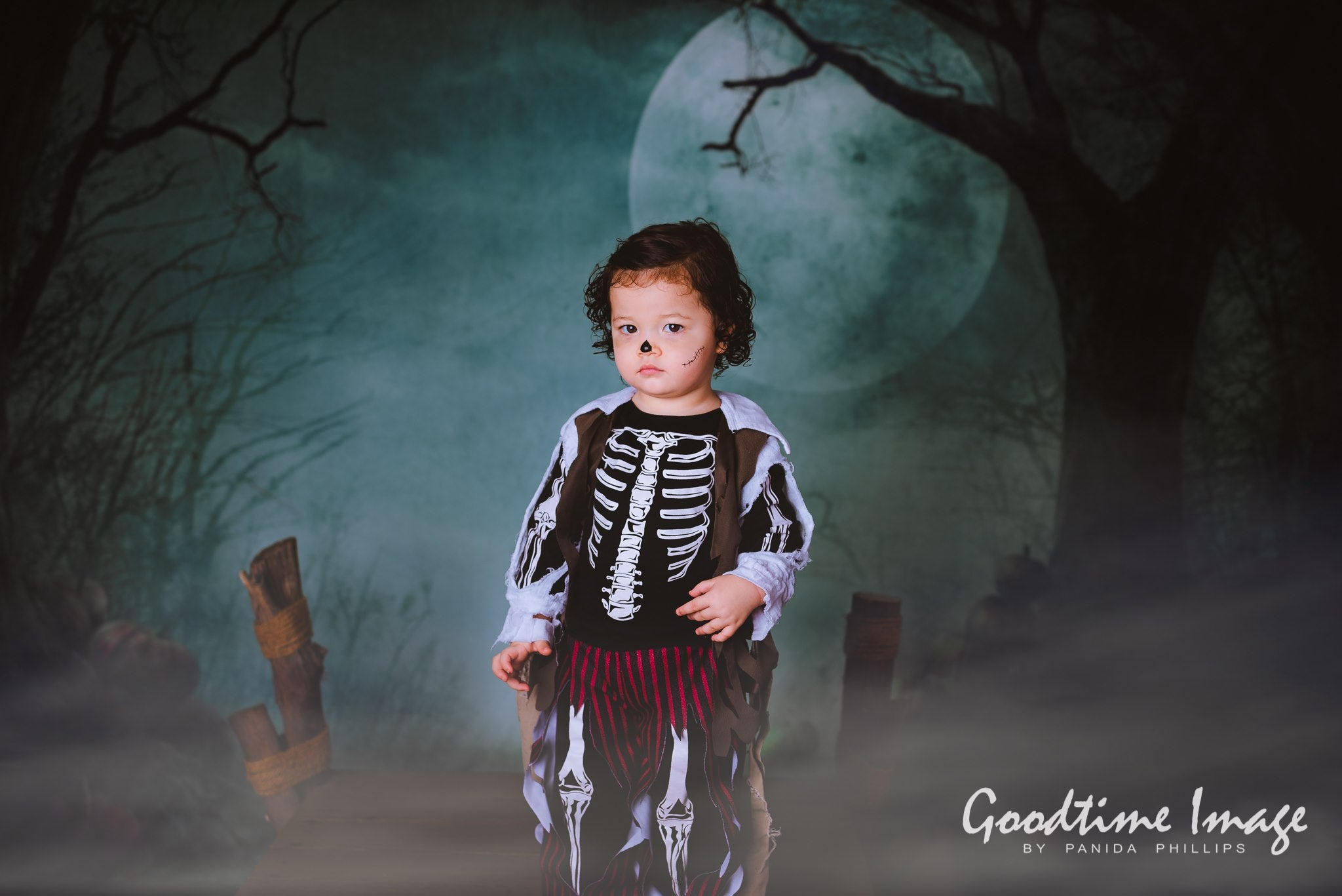 Load image into Gallery viewer, Kate Fantasy Halloween  Forest Night Moon Backdrops for Photography
