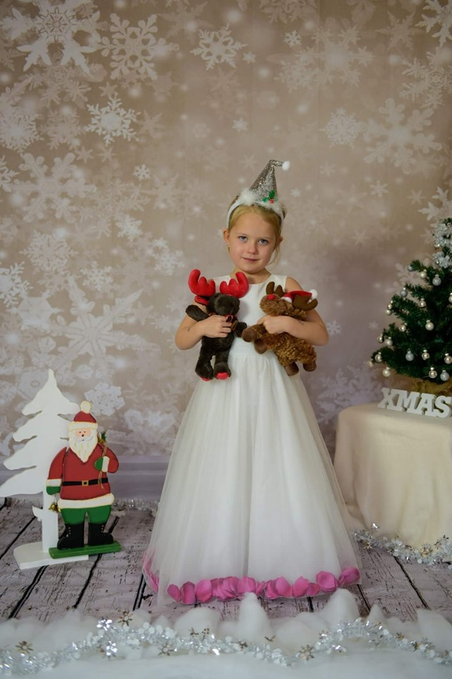 Kate Sliver Glitter Snowflake Snow Winter Christmas Backdrop for Photography - Kate backdrops UK