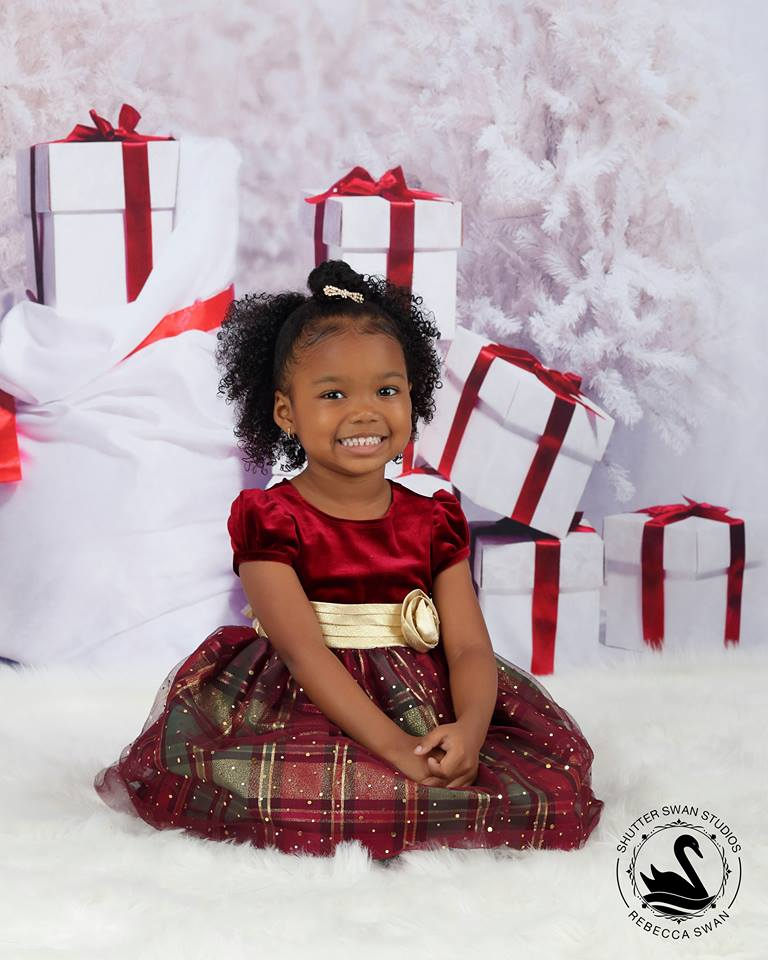 Kate Gift And Snow Tree Backdrop for Christmas Photography