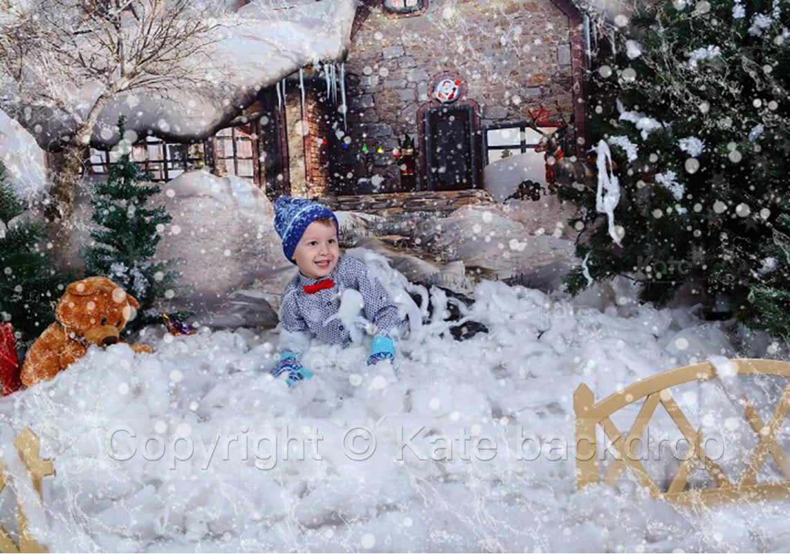 Load image into Gallery viewer, Katebackdrop£ºKate Snow House Fairytale Backdrop Photography With Tree