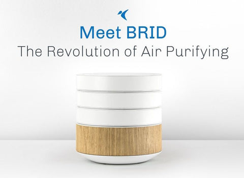 BRID Air Purifier: NanoTechnology that will change your life - Ohmygozh.com