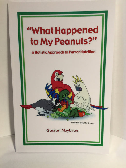 Parrot Holistic Nutrition Guide: What Happened to My Peanuts?