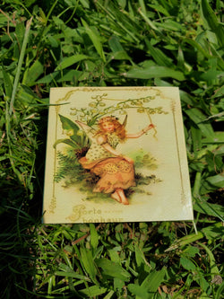 Vintage Fairy Match Box 2