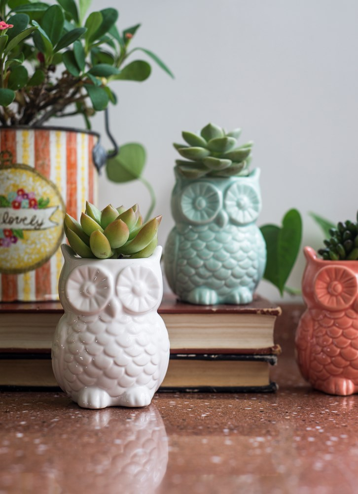 Stoneware Owl Vase w/ Magnets - Pick your color!
