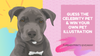 Competition: Guess the Celebrity Pet - Week 1, 2021