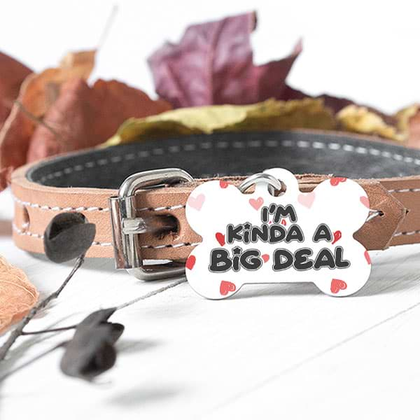 "▶ Custom Dog Bone Pet Tag ""I'm Kinda A Big Deal"""