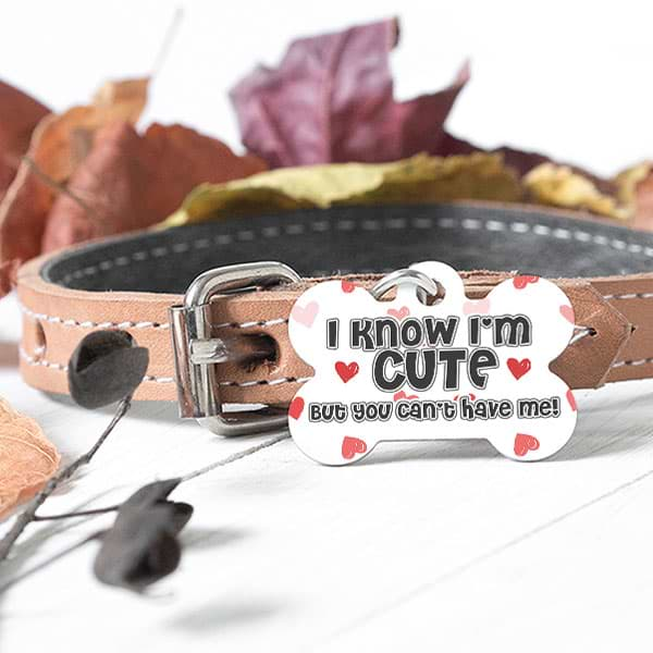 "▶ Custom Dog Bone Pet Tag ""I Know I'm Cute"""