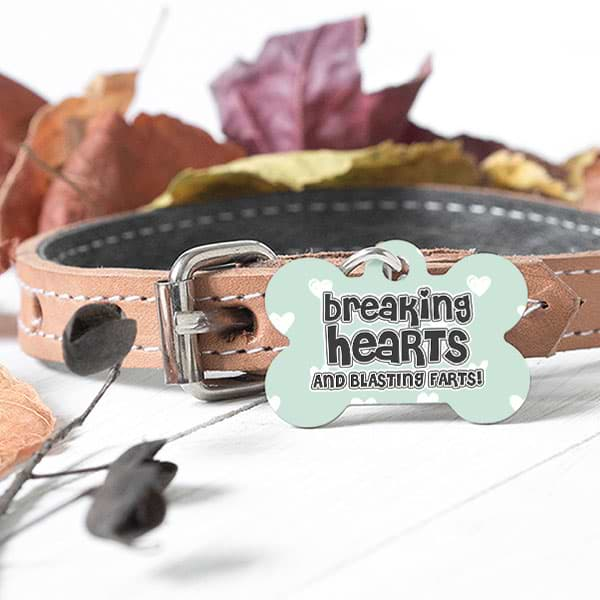 "▶ Custom Dog Bone Pet Tag ""Breaking Hearts Blasting Farts"""