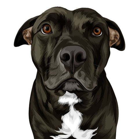 ▶ Digital Art File Of Your Pet