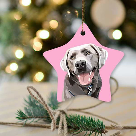 ▶ Custom Pet Christmas Ornament (Star)