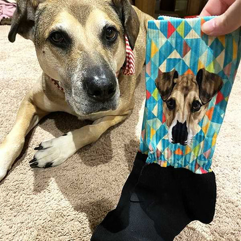 Image of ▶ Custom Pet Socks