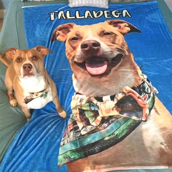 Custom Pet Fleece Blanket [Top Seller]