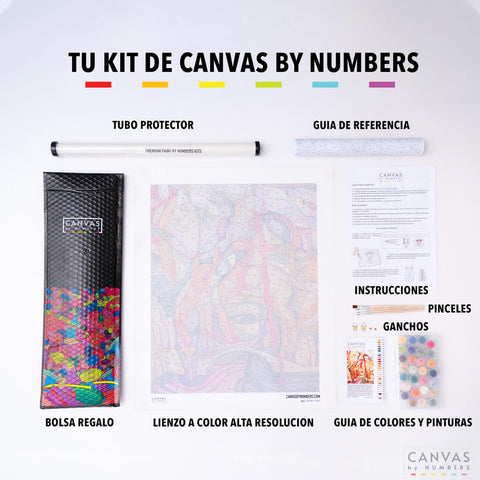 Canvas by Numbers kit