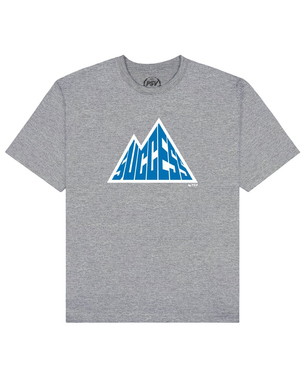 Success is a Mountain Print T-Shirt in Gray - T-Shirts - PSV - BRANMA