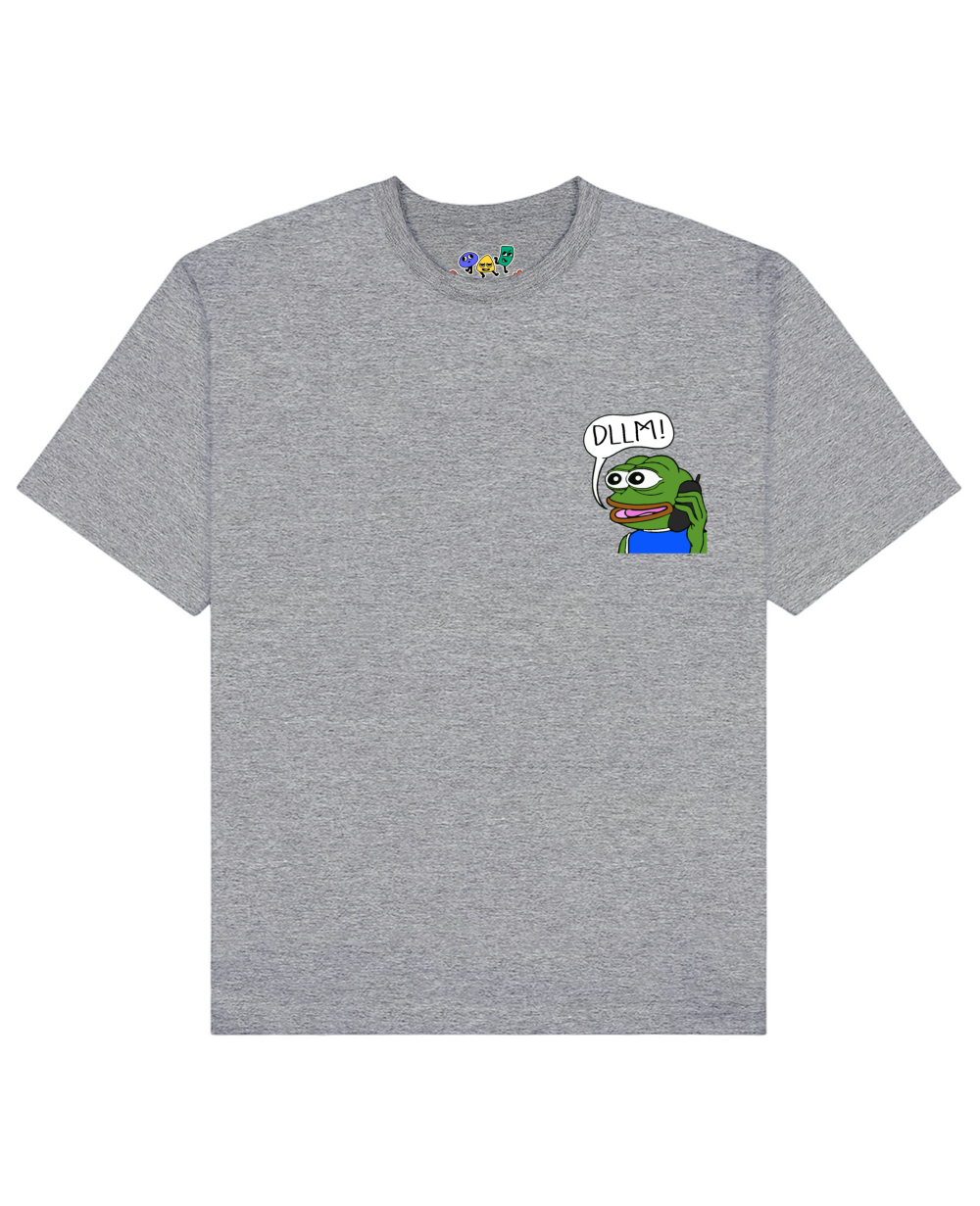 DLLM Pepe The Frog Print T-Shirt in Gray