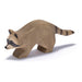 Ostheimer Raccoon Running