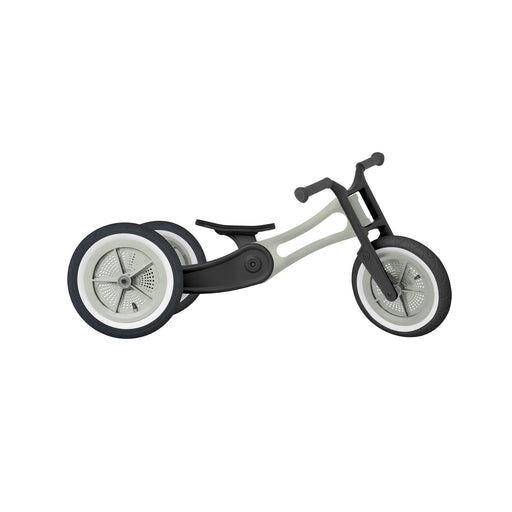 Wishbone Bike RE2 3in1