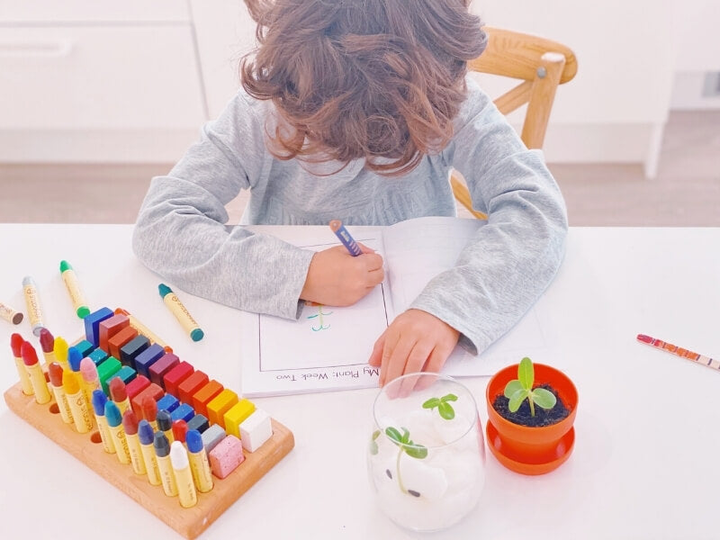 Assist your little learner in filling out their Plant Journal