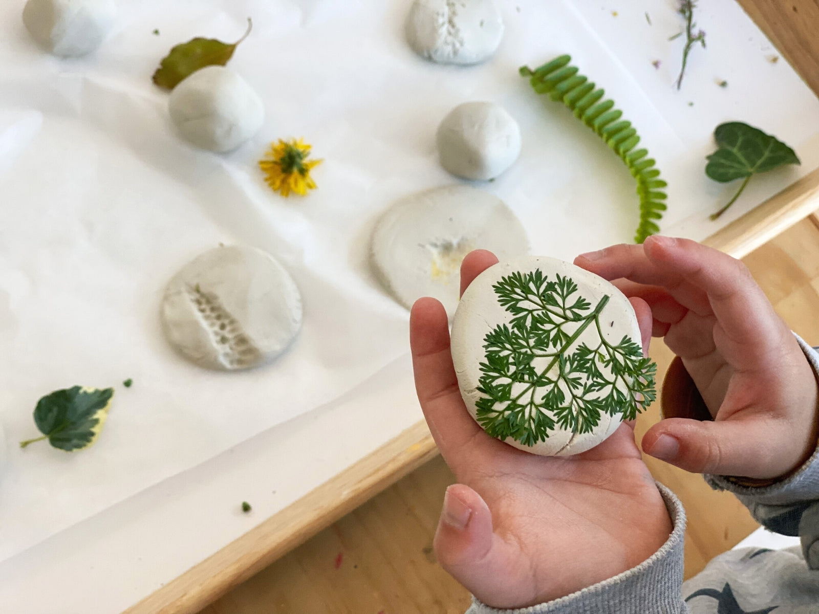 Press the clay ball down onto the leaves or flowers.