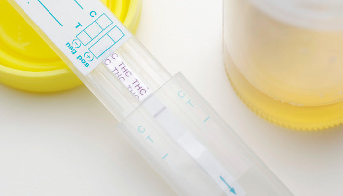 Does Cbd Show In Drug Tests? Here's What You Need To Know