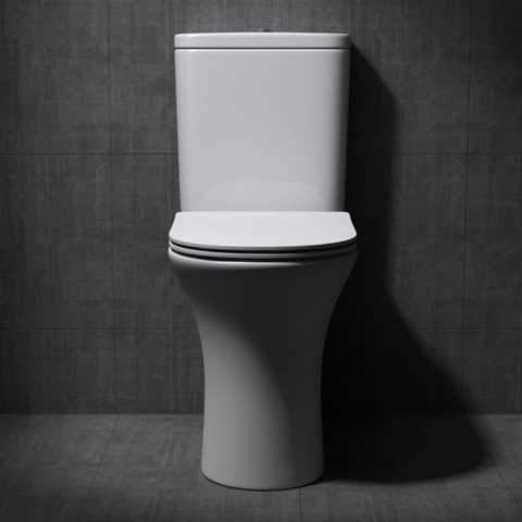 Image showing another suggestion for a toilet seat for a bathroom remodel project.