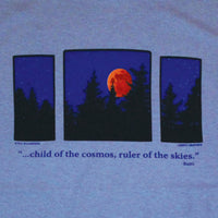 Moon Triptych Adult Stone Blue T-shirt