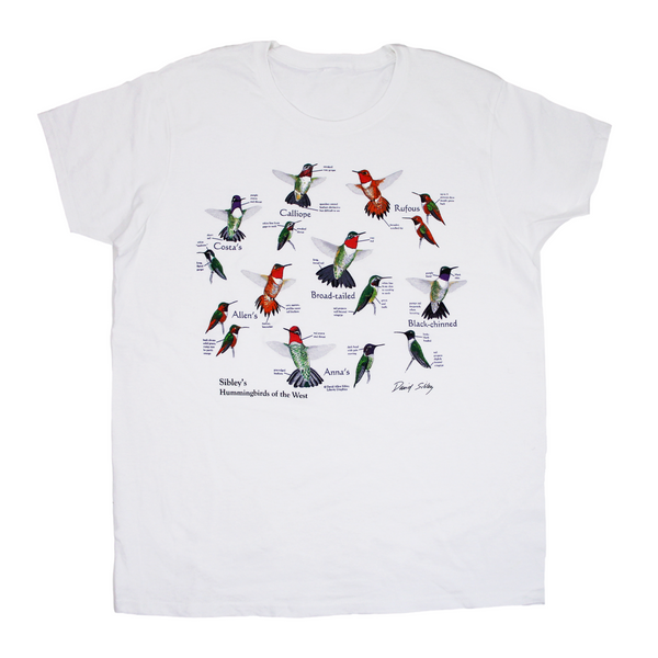 David Sibley's Hummingbirds Of The West Ladies White T-shirt