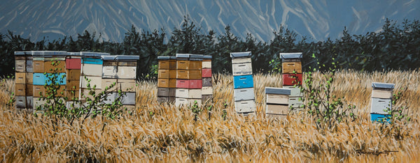 Canterbury Beehives