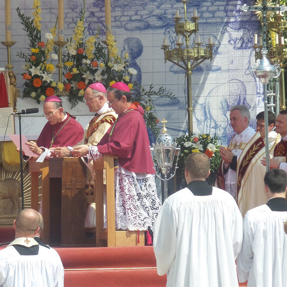 2017 in Review: SSPX Stands Firm