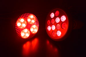 The Best Red Light Therapy Bulbs on Amazon? Review of Hooga, Wolzek, ABI, Bestqool, PDGrow