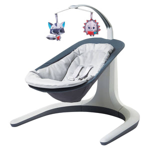 http://www.ebay.com/i/Tiny-Love-153-Natures-Way-Bounce-Sway-Gray-/272838696436