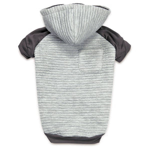 http://www.ebay.com/i/Zack-Zoey-Elements-Textured-Stretch-Pet-Hoodie-Light-Gray-Large-/302529245175