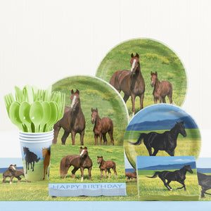 http://www.ebay.com/i/Wild-Horses-Birthday-Party-Supplies-Kit-8-Guest-/172971657326