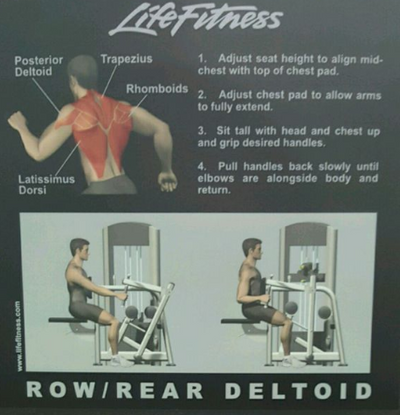 MÁQUINA ROW REAR DELTOID LIFE FITNESS*