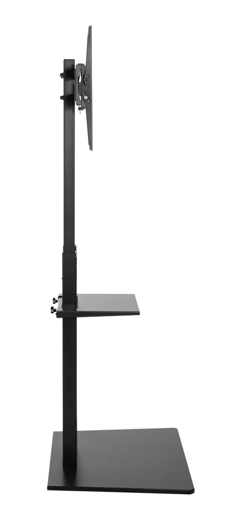 Ultra Slim Artistic TV Floor Stand Mount with Tilt & Height Adjustable by Apex (ATMSS6401)