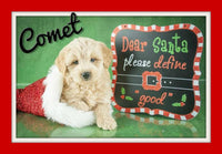 mini goldendoodle puppies for sale near me