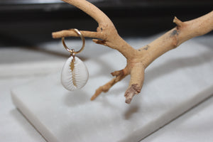 14k Yellow Gold Cowrie Shell Earring